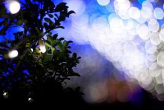 軽井沢のクリスマスのイメージ画像です