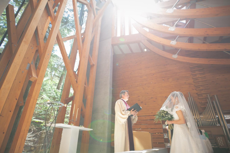 祝福の日差しを浴びながらの結婚式の写真