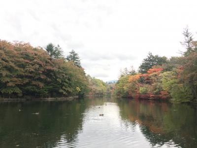 2019/10/21雲場池