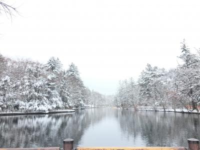 雪化粧した雲場池