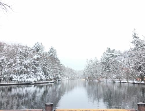 雪の軽井沢/春以降の軽井沢ウェディングご相談会のお知らせ